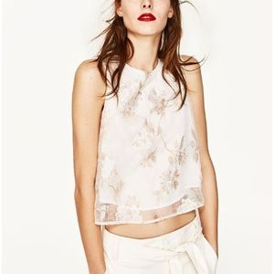 Zara Organza Top with Embroidery